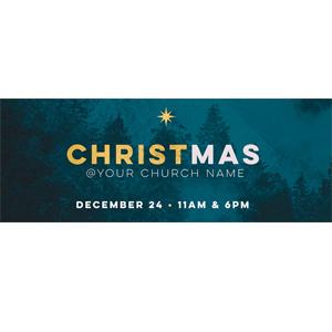 christmas teal banner